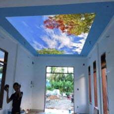 Tranh dán trần nhà mã 10