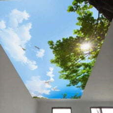 Tranh dán trần nhà mã 11