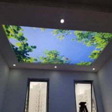 Tranh dán trần nhà mã 13