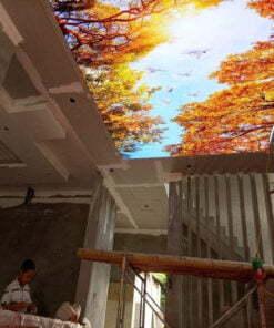 Tranh dán trần nhà mã 5