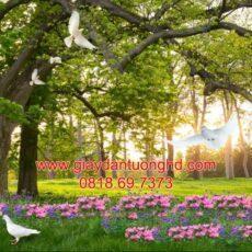 Mẫu tranh dán tường phong cảnh thiên nhiên-101