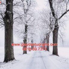 Mẫu tranh dán tường phong cảnh thiên nhiên-138
