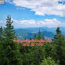 Mẫu tranh dán tường phong cảnh thiên nhiên-148