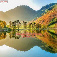 Mẫu tranh dán tường phong cảnh thiên nhiên-46