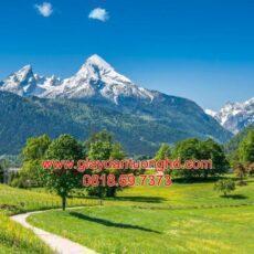 Mẫu tranh dán tường phong cảnh thiên nhiên-65