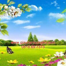 Mẫu tranh dán tường phong cảnh thiên nhiên-95