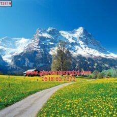 Mẫu tranh dán tường phong cảnh thiên nhiên-96