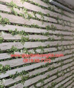 Thi công giấy dán tường giả gỗ-10