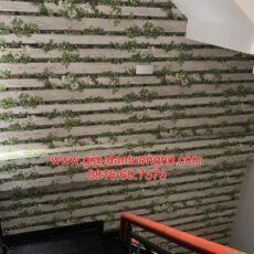 Thi công giấy dán tường giả gỗ-11