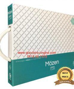 Nhà mẫu MOZEN-29